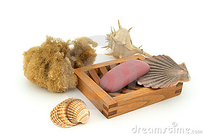 Soap with natural sponge and shells.
