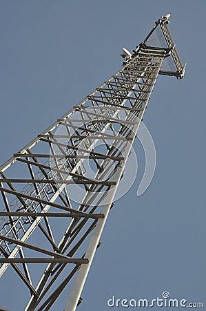 Soaring mast cell