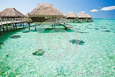 Sobre o bungalow da água com etapas em lagoa surpreendente