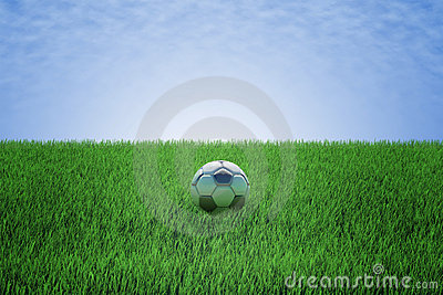 Soccer ball in a green field