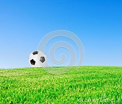 Soccer ball in meadow