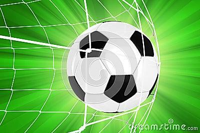 Soccer Ball in a Net