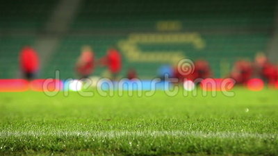 Soccer field grass with rain drops with unfocused team training process on the background. High Definition Video : 29.97 FPS 10sec Please look another footages stock video