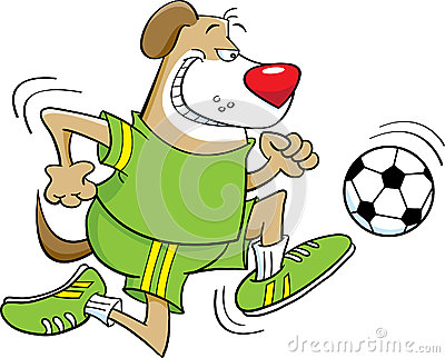 Soccer playing dog