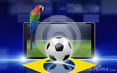Soccer video game, brazil parrot