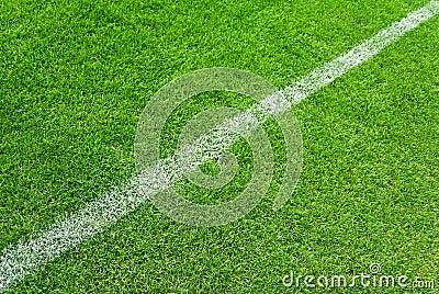 Soccer white lines