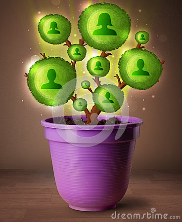 Social network tree coming out of flowerpot