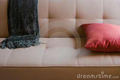 Sofa with Throw Blanket