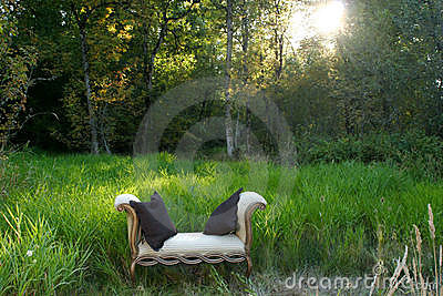 Sofa in the woods