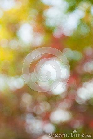 Soft, blurry, photographed bokeh background