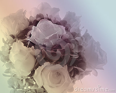 Soft Bouquet Of Roses