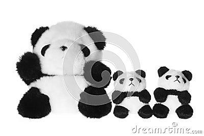 Soft Toy Pandas