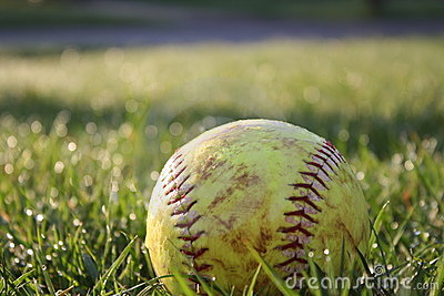 Softball in dewy grass