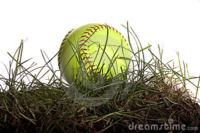 Softball in Grass