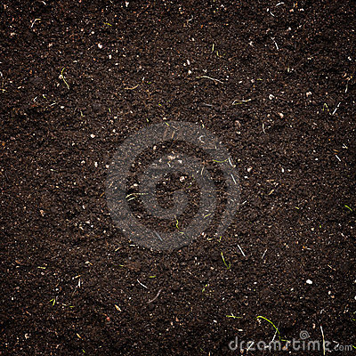 Free Soil Stock Image - 24223001