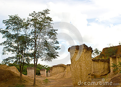 Soil columns in national park