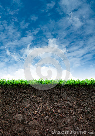 Soil with Grass in Blue Sky