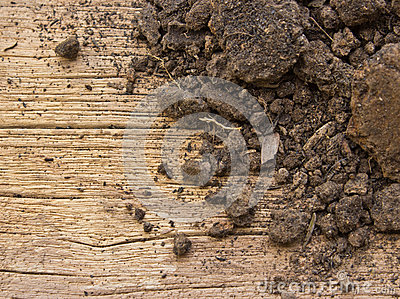 Soil on a old wood background