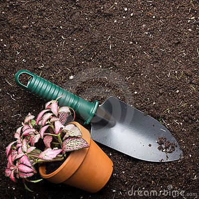 Soil, spade and flower in pot