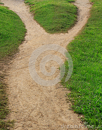 Soil trail and green grass separated two way