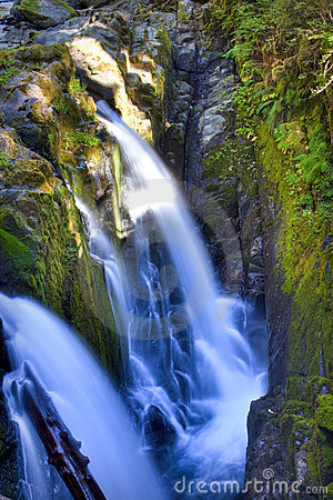 Free Sol Duc Falls Royalty Free Stock Photo - 11407335