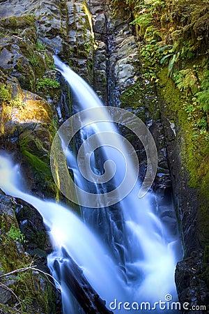 Free Sol Duc Falls Stock Image - 11407401
