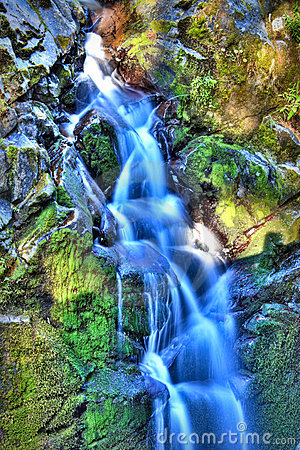 Free Sol Duc Falls Royalty Free Stock Images - 11407429