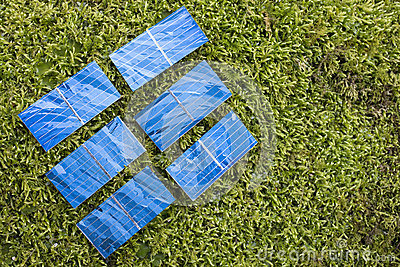 Solar cells on the moss