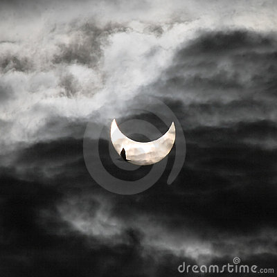 Solar eclipse and bird Editorial Stock Photo
