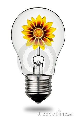 Solar Energy Concept 2