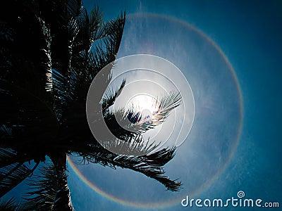 Circumhorizontal arc, circular rainbow