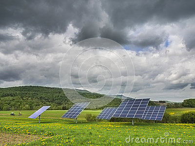 Solar panels in dandelion field