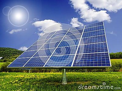 Solar panels in dandelion field