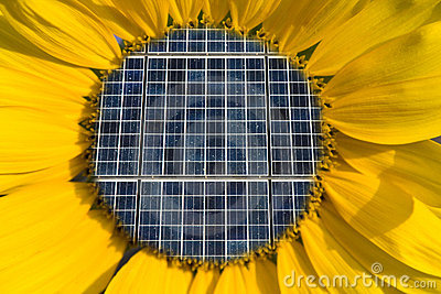 Solar Panels Inside of a Sunflower