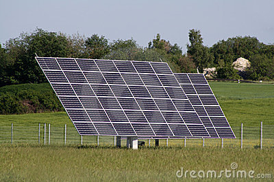 Solar plants in the field