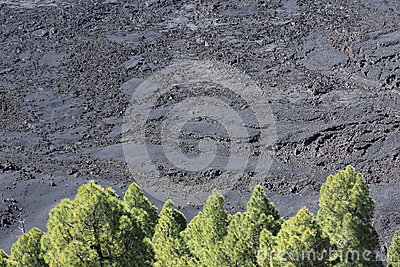 Solidified lava on La Palma, Canary Islands