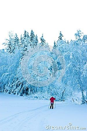 Solitary Skier