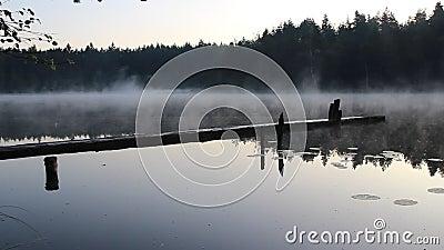 Soluppgång och dimma i den vackra sjön arkivfilmer