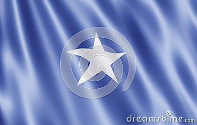 The Somali Republic flag