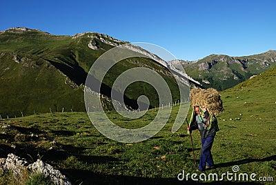 Somiedo. Asturias Editorial Photography