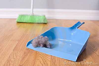 Sorgente di pulizia