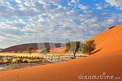 Sossusvlei landscape, Namibia