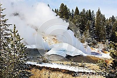 Sosta nazionale del Yellowstone