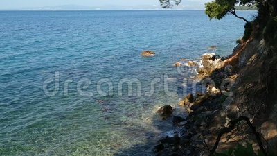 The sound of the sea. And the crows on the shore of the sea on a beautiful day stock footage