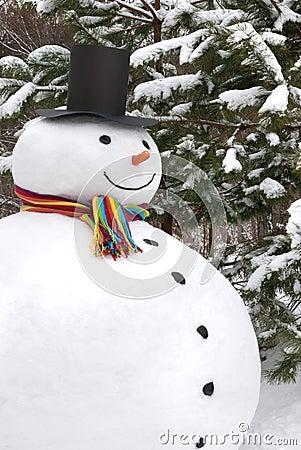 Sourire de bonhomme de neige