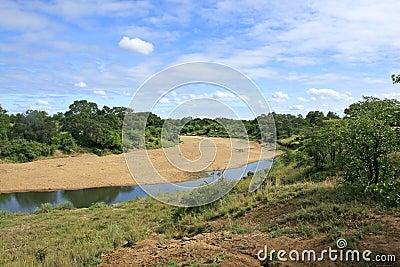 South african landscape