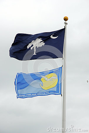 Free South Carolina State Flag Stock Photos - 30697193
