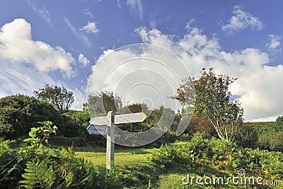 South West coast footpath, Exmoor