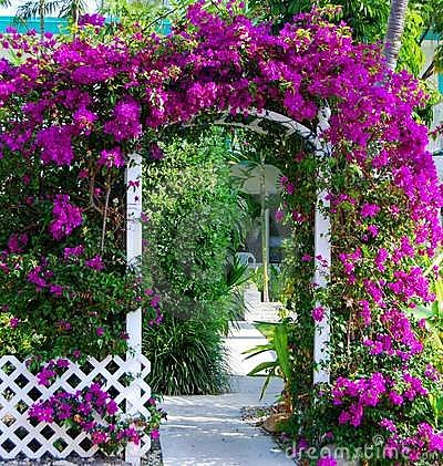 Garden Gate Stock Photos Images Pictures 17722 Images