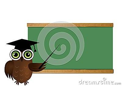Sowa nauczyciel